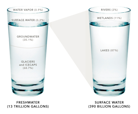 Infographic of freshwater vs. surface water