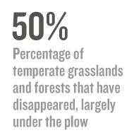 50% Percentage of temperate grasslands and forests that have disappeared, largely under the plow
