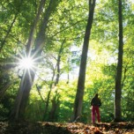 Woman standing in woods with towering trees