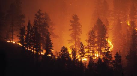 Forest fire near Bailey, Colorado