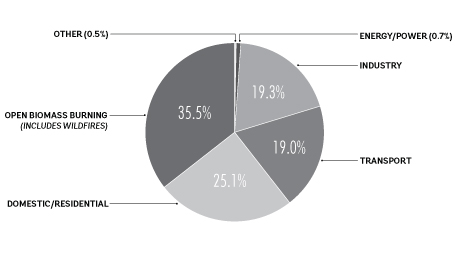 Chart of global black carbon emissions by type