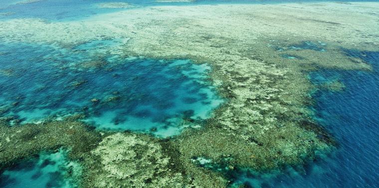 Aerial view of ocean and reefs