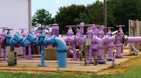 Purple pipes at Blue Heron Wetlands