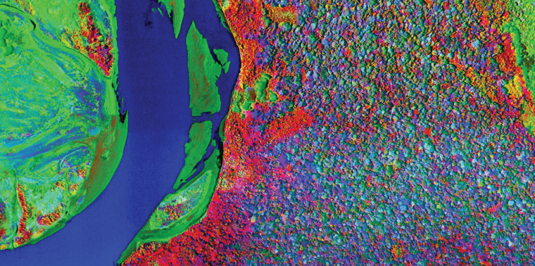 Spectrometer screen image of river and trees from above