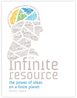 The Infinite Resource book cover
