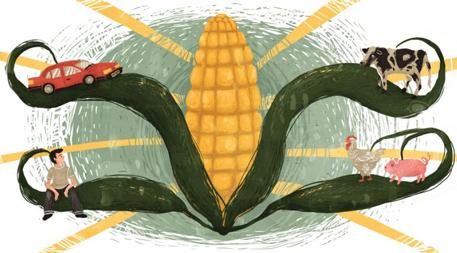 Illustration by Kelsey King