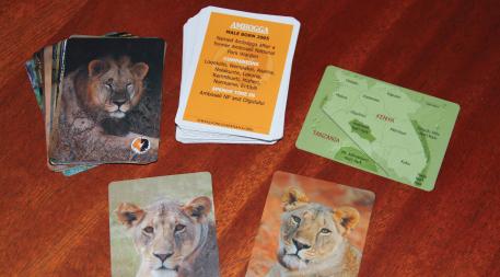 Lion cards