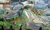 Cultural Landscape of Honghe Hani Rice Terraces, China