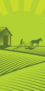 OPINION: 2014: The Year of Family Farming