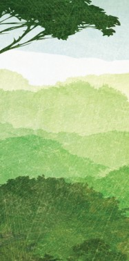 OPINION: Together, We Save Forests