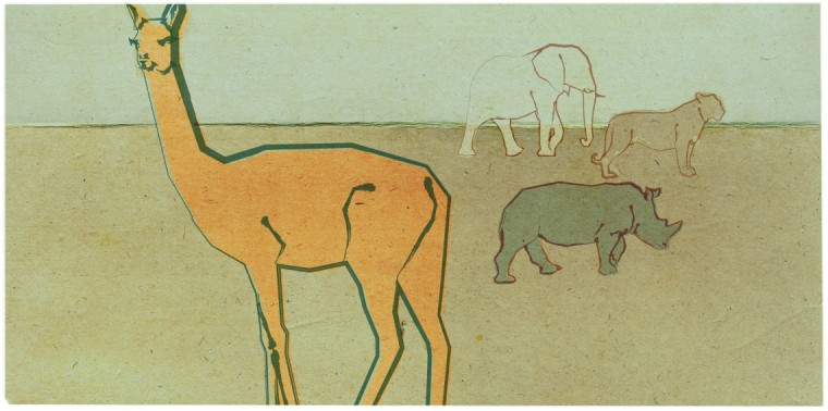 Vicuna with elephant, tiger and rhino in background