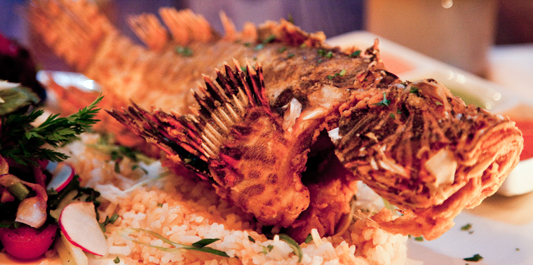 Lionfish served at Norman's Cay