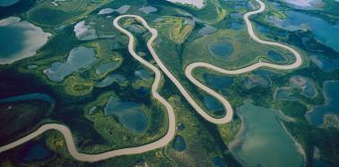 Endangered Deltas