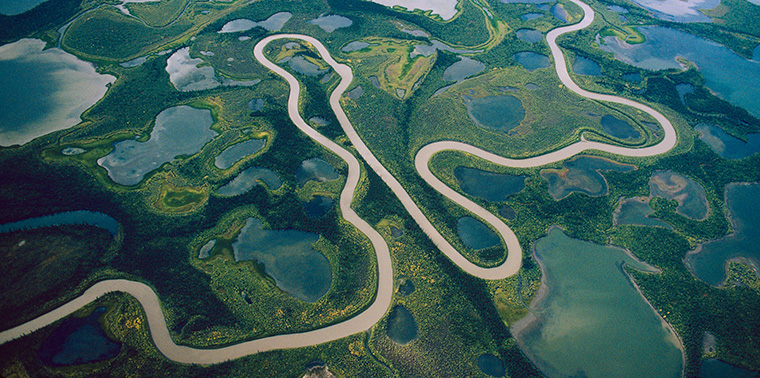 Endangered Deltas Ensia