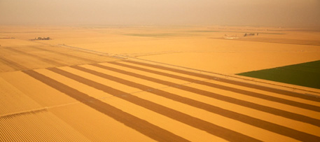 Dry farm fields in California's Central Valley