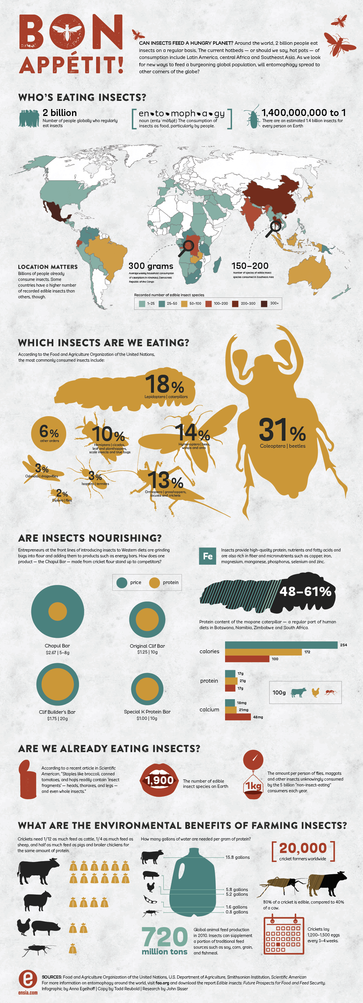 Can Insects Feed A Hungry Planet? | Ensia