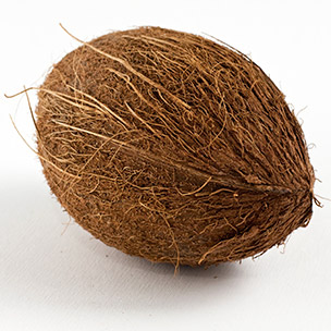 Photo of a coconut