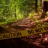 Treating environmental crime like other crime