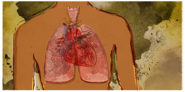 Pollution in lungs and heart