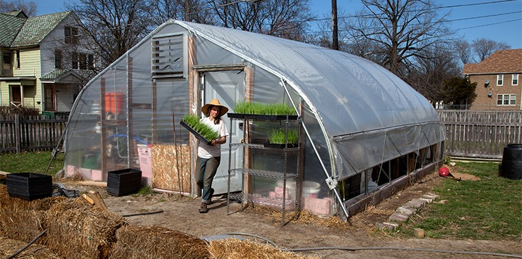 Urban farming is booming, but what does it really yield? | Ensia
