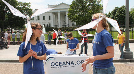 Oceana canvassing in front of White House
