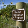 Environmental restoration is big business