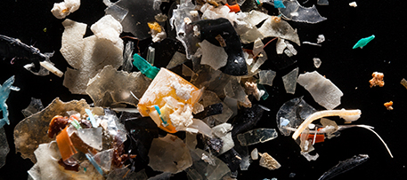 Microplastics that form as plastic trash deteriorates can foul waterways and accumulate in wildlife. Photo by Chesapeake Bay Program (Flickr/Creative Commons)