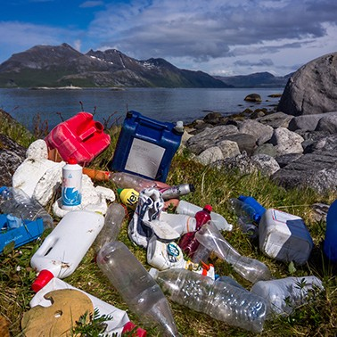 The search for sustainable plastics