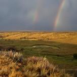 Rainbow at American Prairie Reserve