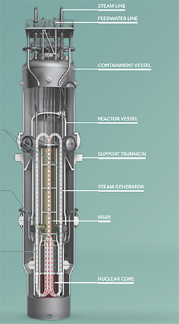 Natural circulation of reactor coolant flow