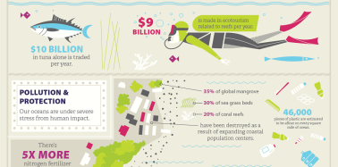 Infographic: Why even landlubbers need healthy oceans