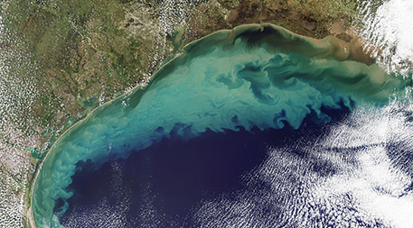 Sediment in the Gulf of Mexico