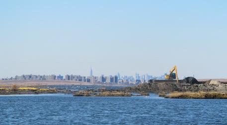 Wetland restoration at Jamaica Bay in New York