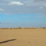 Drought relief in Ethiopia