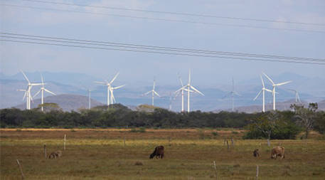 Wind turbines over over a field in Oaxaca, Mexico, where there are concerns about energy equity. Photo by the author