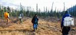 Young Dene hunters walk through the boreal forest of the Mackenzie Mountains to find caribou