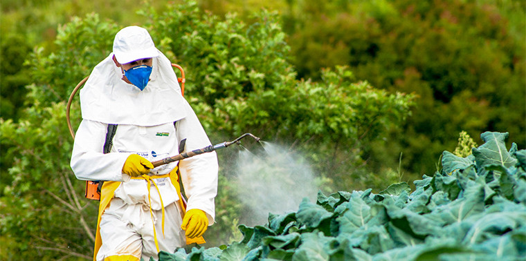Developing World Is Awash In Pesticides Does It Have To Be