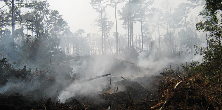 feature_peat_fires_main-1-760x378.jpg