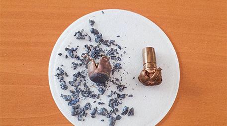 Lead bullet vs. non-lead bullet