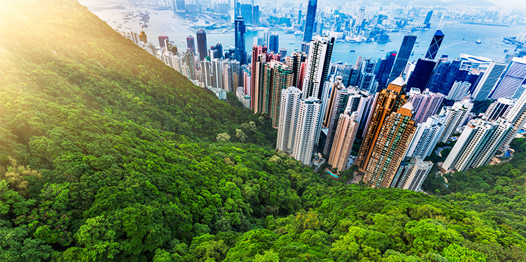 Hong Kong city and forest
