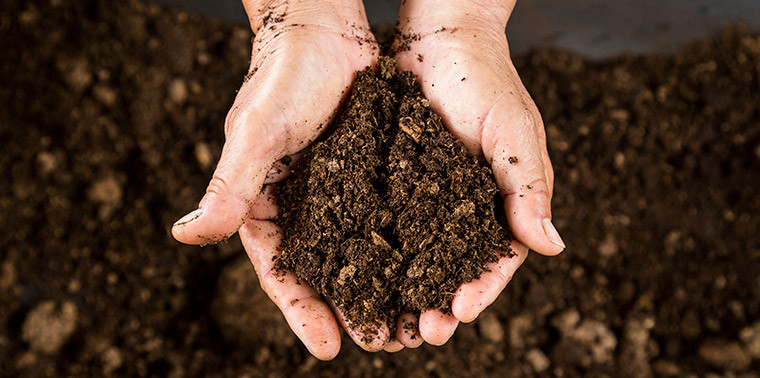 How does this soil protect plants from devastating disease for Three uses of soil