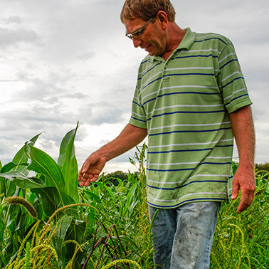 This Kansas farmer fought a government program to keep his farm sustainable