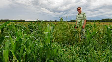 Now that he no longer has to follow strict rules about cover crops, Fuller is able to experiment with a variety of plant mixes to see what combinations do the best job of keeping his land healthy while providing an income, too. Photo by Dave Leiker.