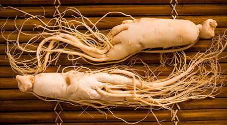 Wild ginseng is threatened by overharvest.