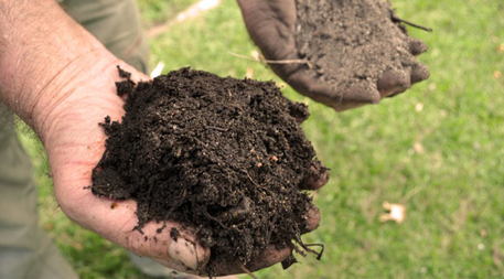 How a new way of thinking about soil sparked a national for Organic soil definition