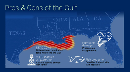 Should open ocean aquaculture in us start in the gulf of for Fish farming pros and cons