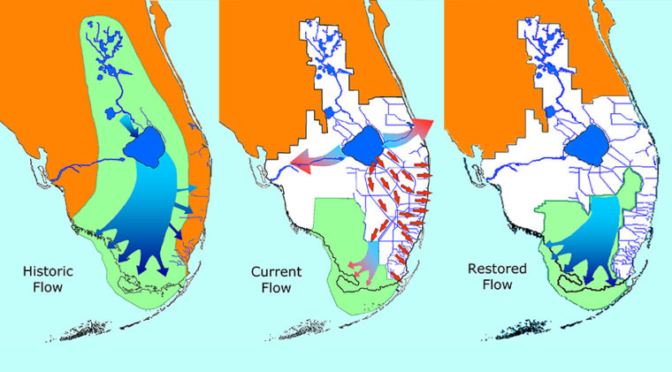 The Comprehensive Everglades Restoration Plan aims to bring some semblance of historic water flows back to the Everglades after canals and levees devastated the ecosystem. Image courtesy of Everglades National Park Service