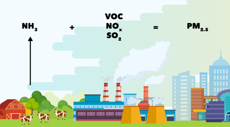 Ammonia can combine with volatile organic compounds (VOC), nitrogen oxides (NOx) and sulfur dioxide in the air to form health-harming small particles (PM2.5). Source: Gu et al. (2014).