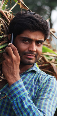How useful really are mobile apps for farmers?