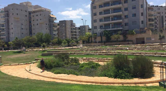Large rain gardens, such as this one in Israel, can help filter pollutants from urban storm water.